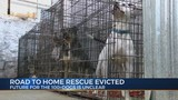 Road To Home Rescue Evicted